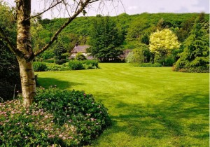 garden maintenance in bolton